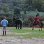 Cursos de iniciación a la equitación