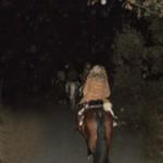 ruta_caballo_nocturna
