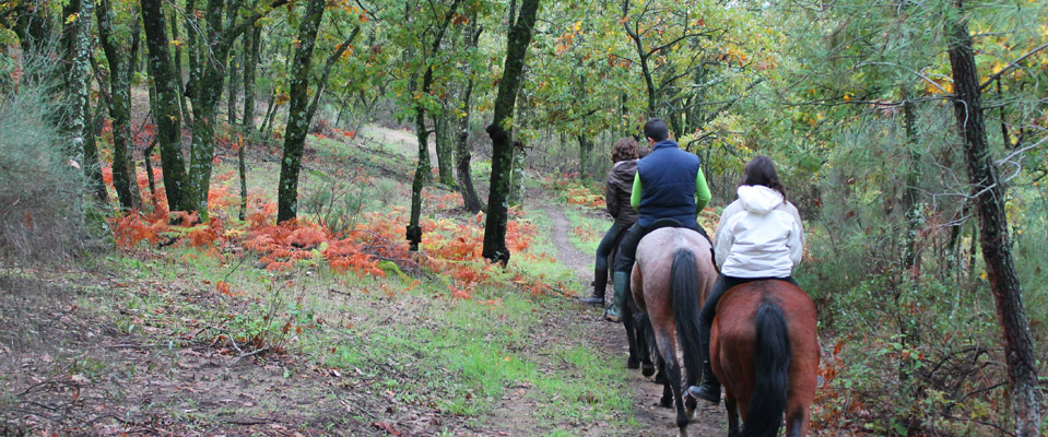 rutas_caballo_slide3