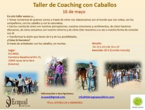 Taller de Coaching con Caballos @ Ecupasil